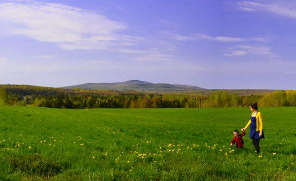 Accueil-printempsLOWRES